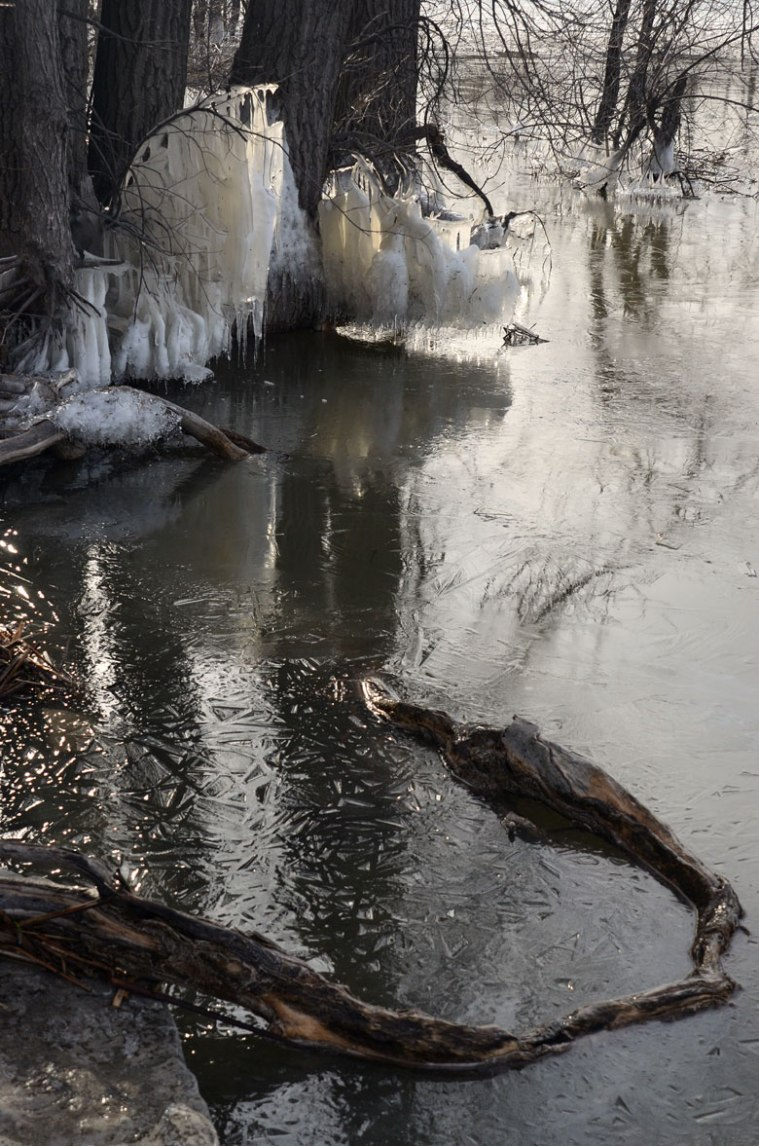 RiverIce_Sculpture4